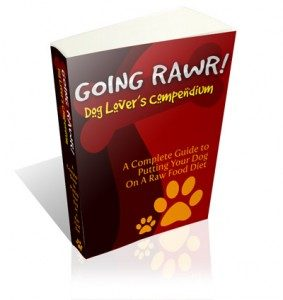Learn How To Feed Your Dog A Raw Food Diet The Right Way:Important!