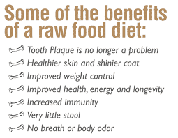 Raw food diets for dogs