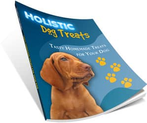 Where to Find Tasty Homemade Treats and Raw Food Recipes for your Dog?
