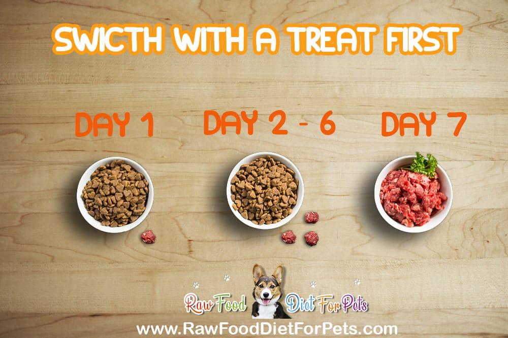 raw food diet switch with teat first