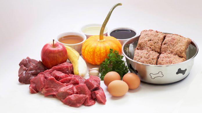 Raw Dog Food Recipes You Can Make at Home