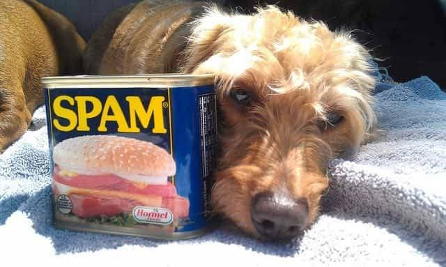 Nutritional Value of Spam
